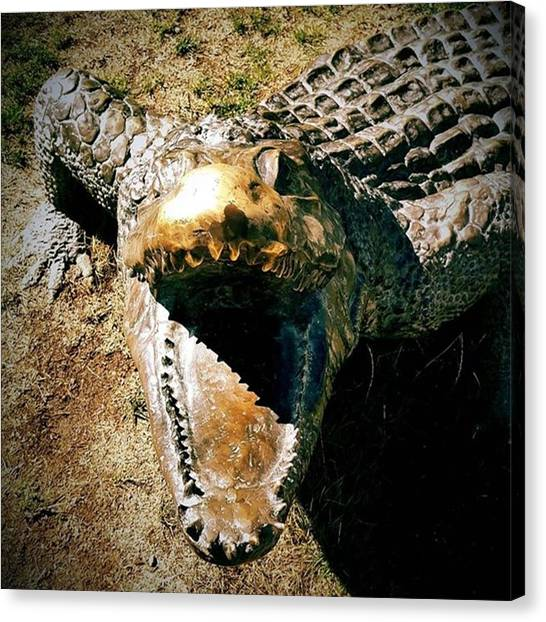 Sculptors Canvas Print - Aaaaarrrrrggggghhhhh!!!!!!! by Christian Richards