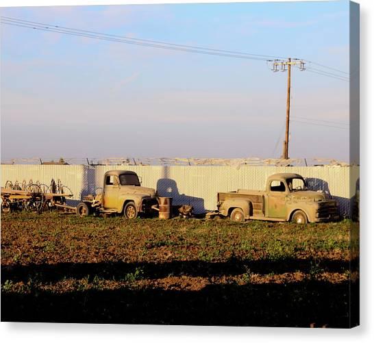 Abandoned Farm Trucks Tracy Ca Canvas Print by Troy Montemayor