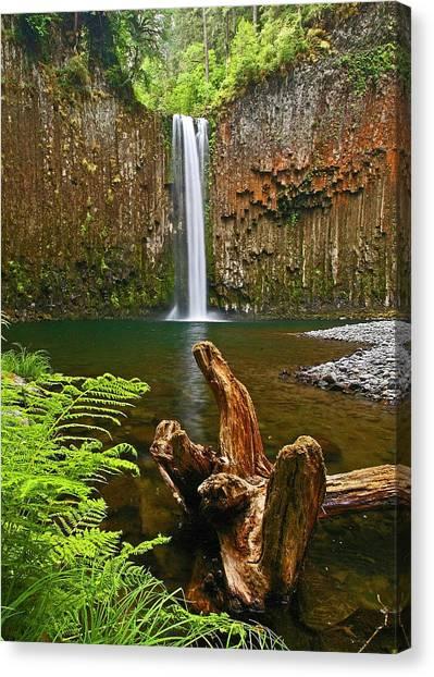 Abiqua Falls Oregon Canvas Print
