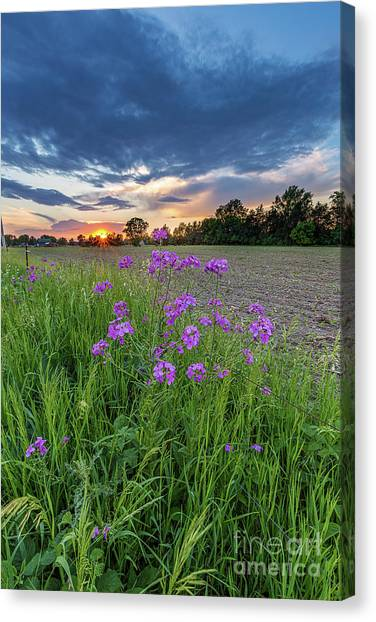 Prairie Sunsets Canvas Print - Above It All by Andrew Slater