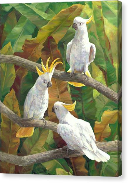 Cockatoo Canvas Print - Above It All by Laurie Hein