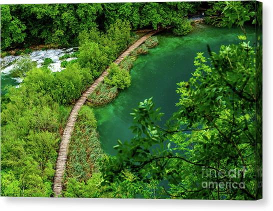 Above The Paths At Plitvice Lakes National Park, Croatia Canvas Print