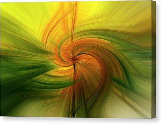 Abstract 12 Canvas Print