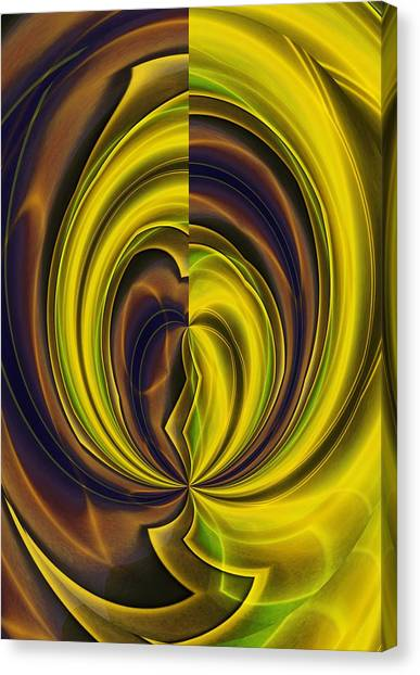 Abstract 121510 Canvas Print