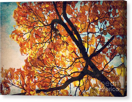 Abstract Autumn Impression Canvas Print by Angela Doelling AD DESIGN Photo and PhotoArt