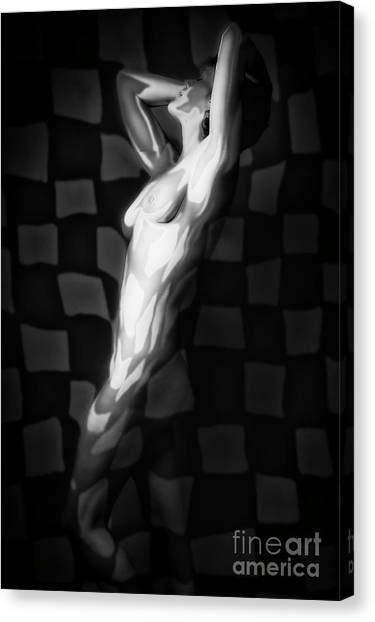 Abstract Nude Canvas Print - Abstract Body by Erik Brede