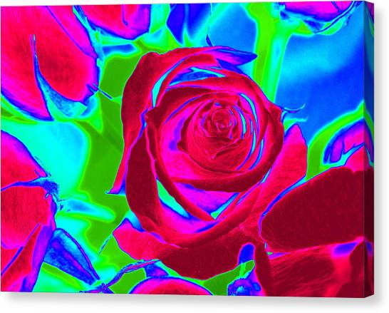 Burgundy Rose Abstract Canvas Print
