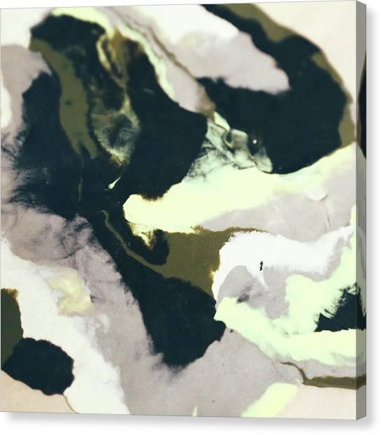 Abstract Camo Canvas Print