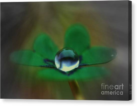 Abstract Clover Canvas Print