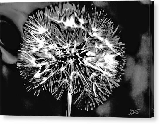 Abstract Dandelion Canvas Print