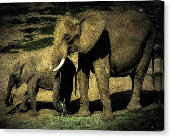 Abstract Elephants 23 Canvas Print