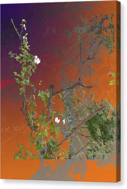 Abstract Flowers Of Light Series #13 Canvas Print