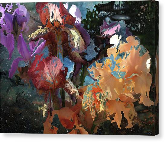 Abstract Flowers Of Light Series #15 Canvas Print
