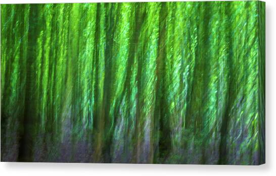 Merging Canvas Print - Abstract Forest by Martin Newman