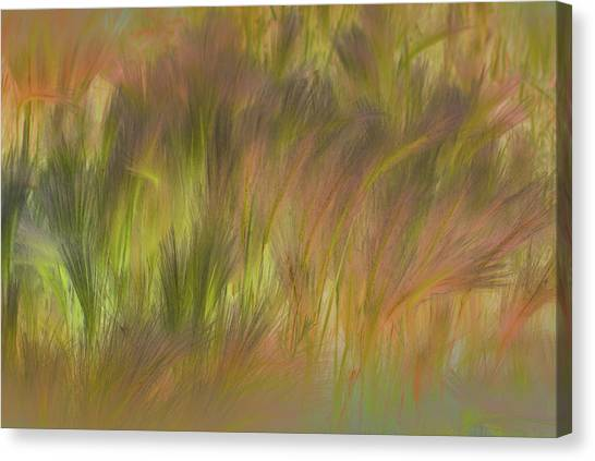 Abstract Grasses Canvas Print by Ronald Hoggard