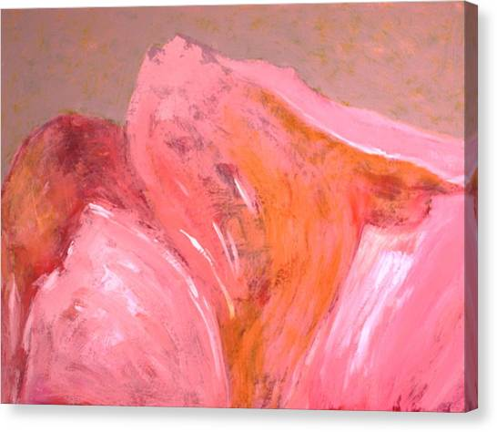 Abstract In Pink Canvas Print