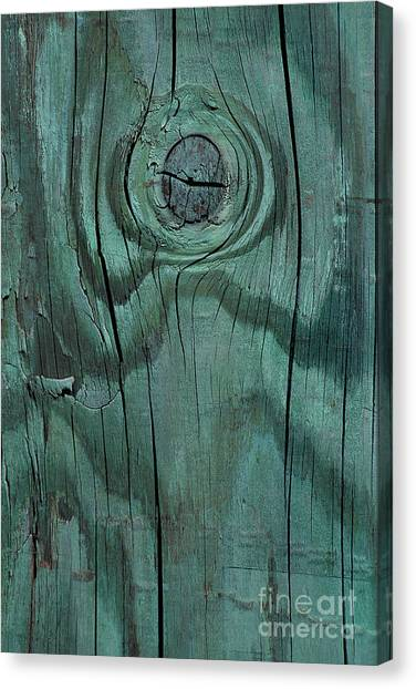 abstract marine wood photography - Green Knot Canvas Print
