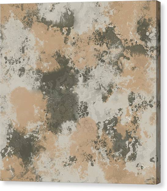 Abstract Mud Puddle Canvas Print