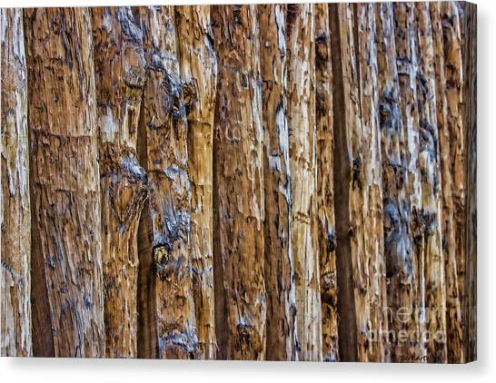 Abstract Posts Canvas Print