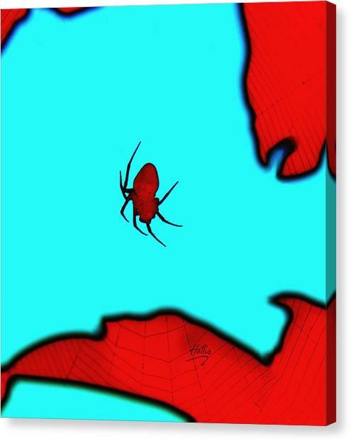 Abstract Spider Canvas Print