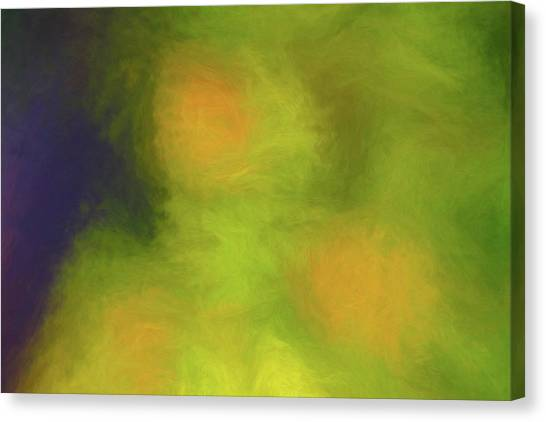 Abstract Untitled Canvas Print