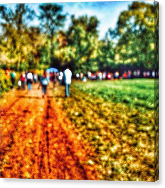Dirt Road Canvas Print - Abstract Walk On The Farm by Phunny Phace