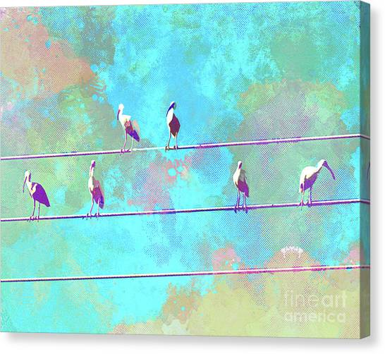 Surf Lifestyle Canvas Print - Abstract Watercolor - Birds Of A Feather I by Chris Andruskiewicz
