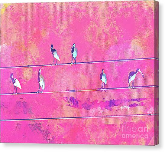 Surf Lifestyle Canvas Print - Abstract Watercolor - Birds Of A Feather II by Chris Andruskiewicz
