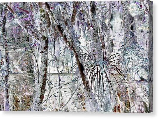 Accentuating The Negative Canvas Print