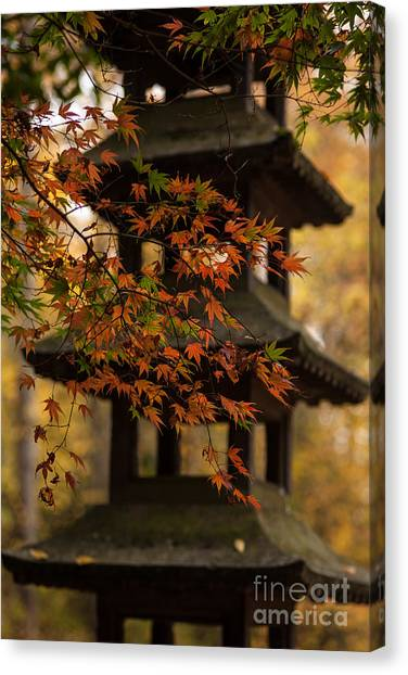 Ace Canvas Print - Acer Pagoda by Mike Reid