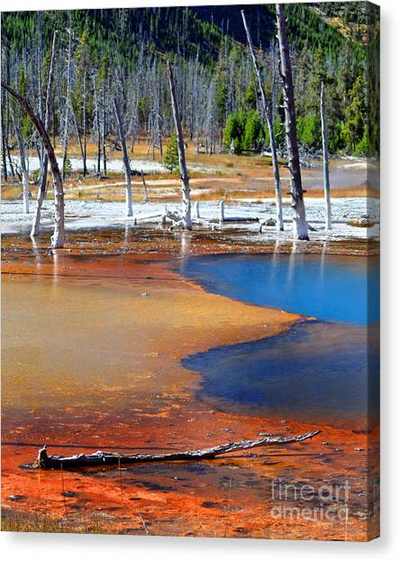 Acid Soup Yellowstone Canvas Print