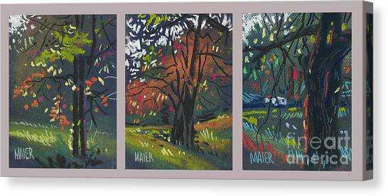 Across The Creek Triplet Canvas Print by Donald Maier