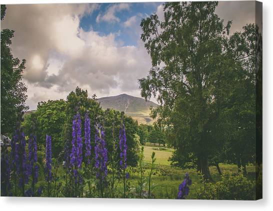 Canvas Print - Across The Glen by Jo Jackson