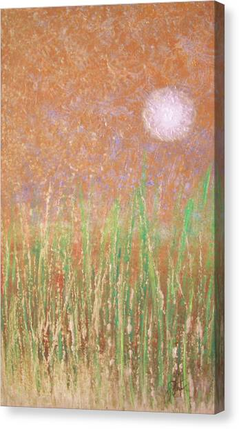 Across The Marsh Canvas Print