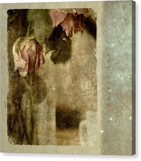 Ad Multos Annos Canvas Print by Inesa Kayuta