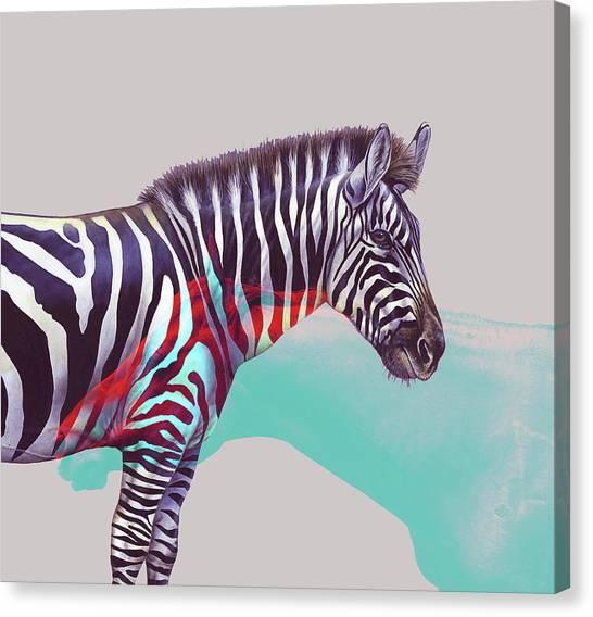 Zebras Canvas Print - Adapt To The Unknown by Uma Gokhale