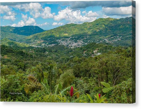 Adjuntas Canvas Print