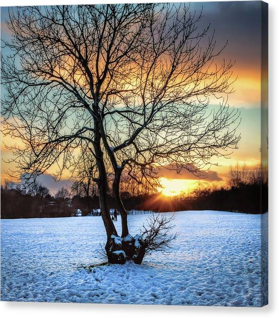 Admiring The Sunet Canvas Print