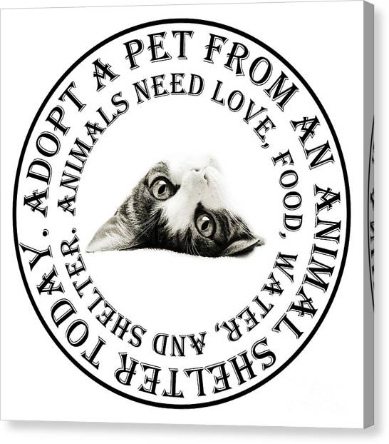 Andee Design Pets Canvas Print - Adopt A Pet T-shirt Design by Andee Design