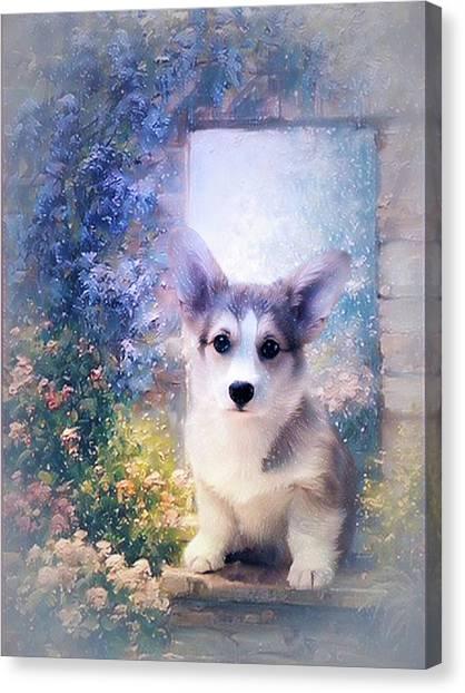 Adorable Corgi Puppy Canvas Print