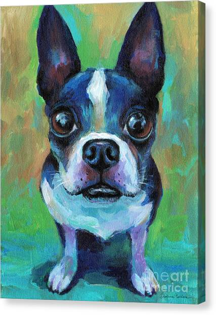 Boston Terriers Canvas Print - Adorable Boston Terrier Dog by Svetlana Novikova
