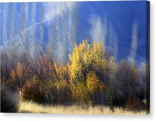 Adour Canvas Print by Robert Shahbazi