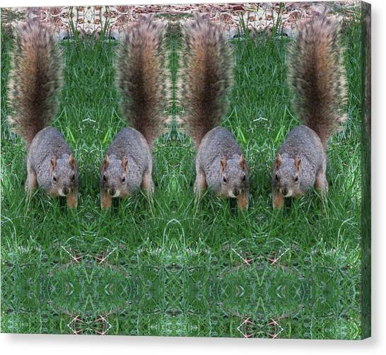 Advancing Army Of Squirrels Canvas Print