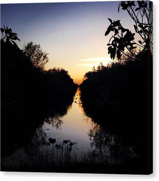 Everglades Canvas Print - Adventure Begins! #sharkvalley Bliss by Erin Ryan