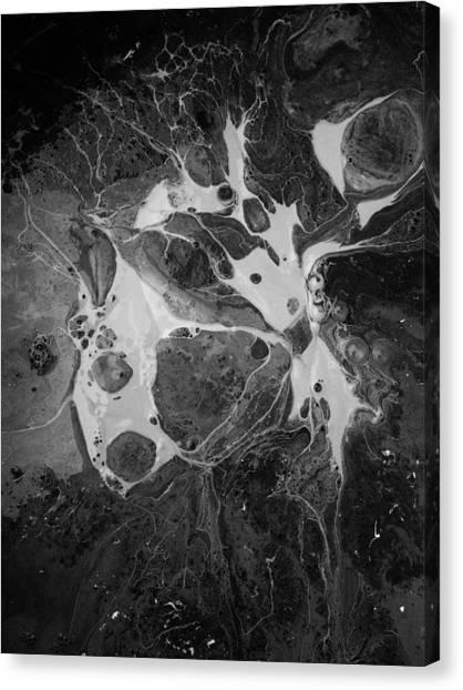 Aerial Photo Vulture Beak Yawn Canvas Print
