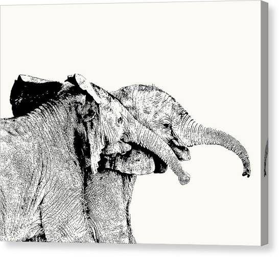 Affectionate Young Elephant Pair Canvas Print