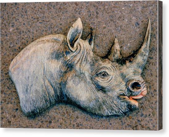 African Black Rhino Canvas Print by Dy Witt