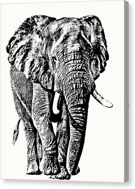 African Elephant Bull, Full Figure Canvas Print