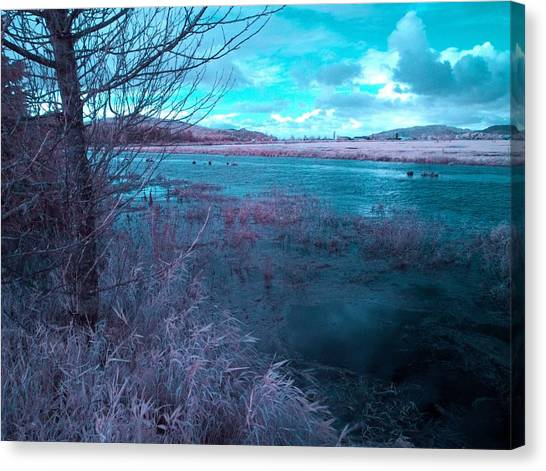 Canvas Print featuring the photograph After Storm Surrealism by Chriss Pagani