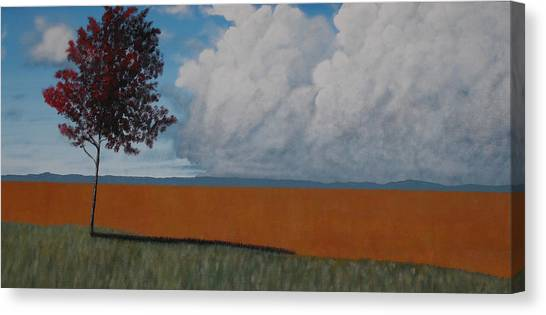 After The Harvest Canvas Print by Candace Shockley